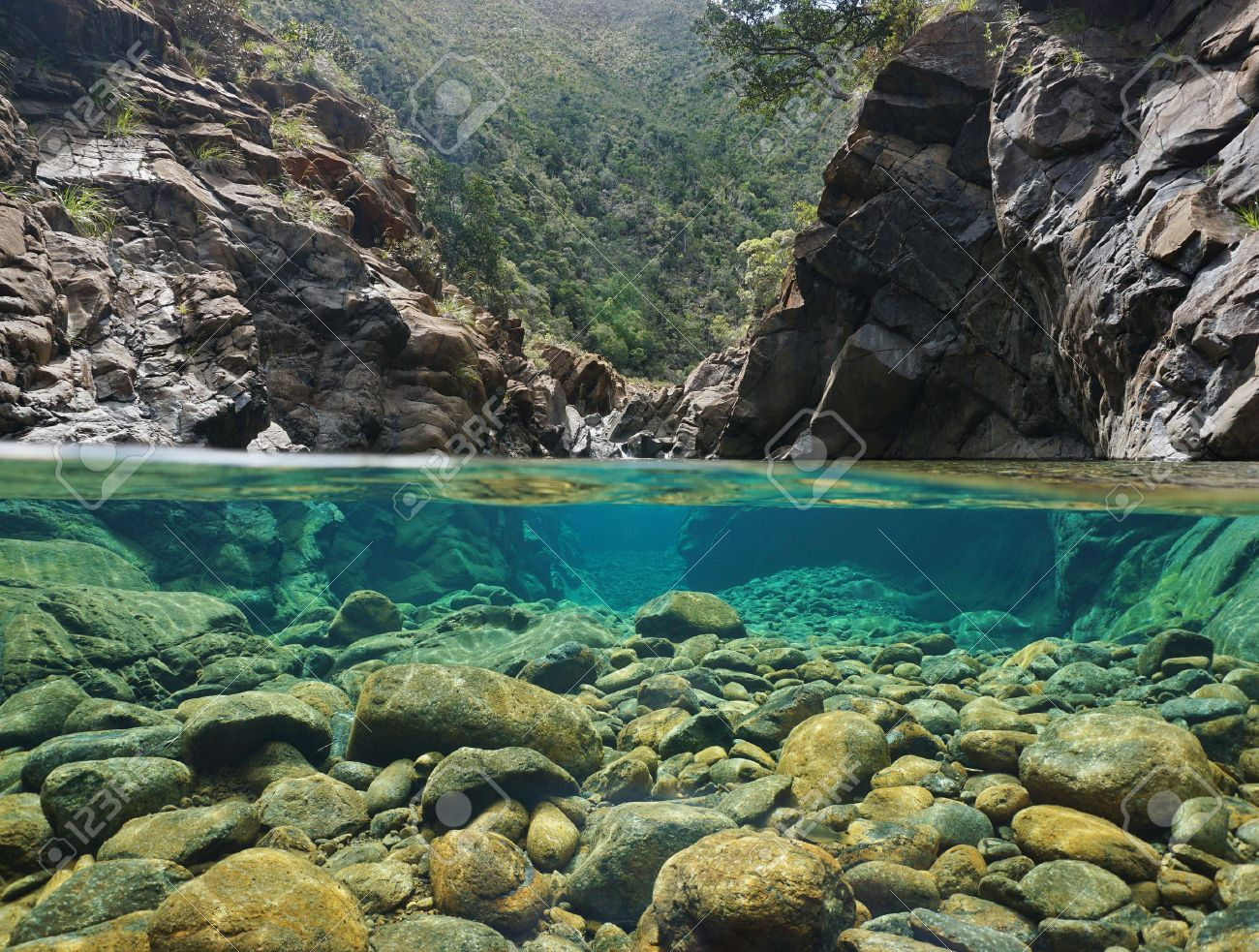 Rocks over and under the water split by waterline in a river with clear water, Dumbea river, New Caledonia - 69569163