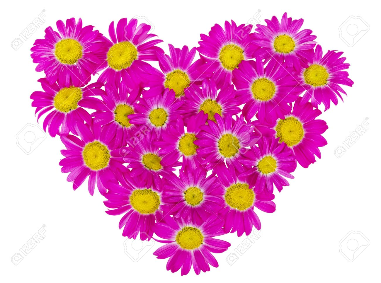 Abstract heart from the rare pink daisies flowers isolated stock abstract heart from the rare pink daisies flowers isolated stock photo 14361998 mightylinksfo
