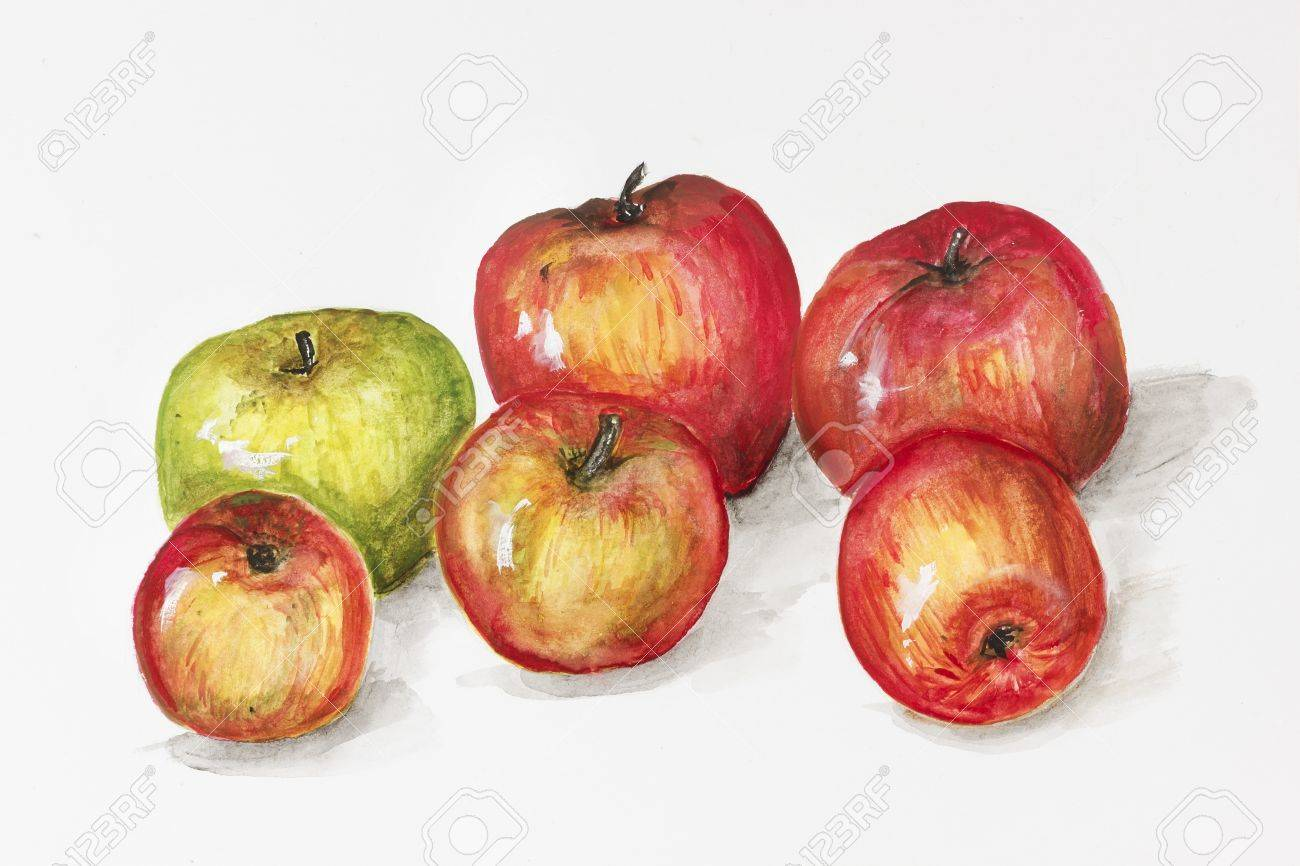 apple fruit painting. green and red apples fruits - handmade acrylic painting illustration on a white paper art background apple fruit