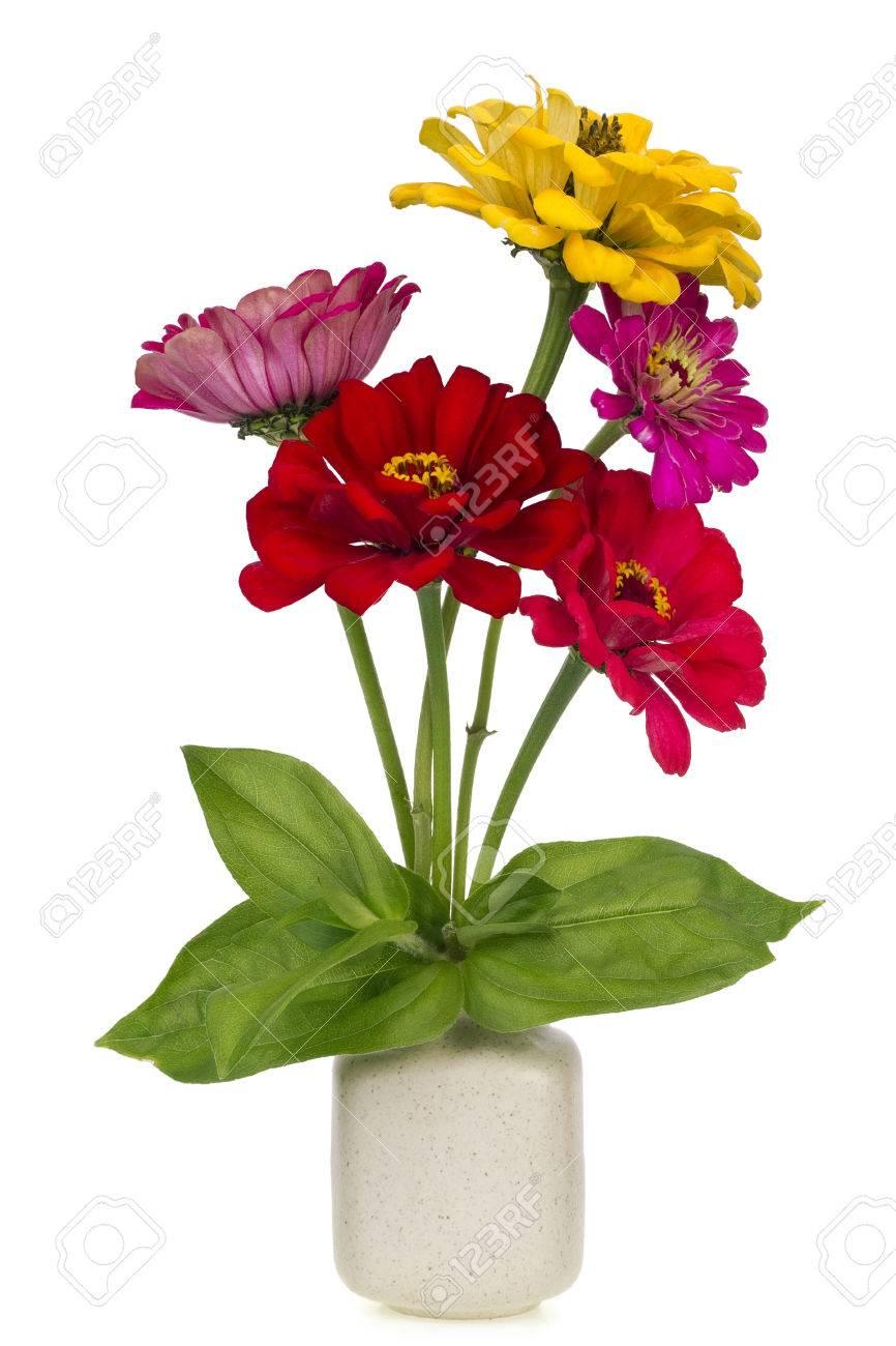 Minimalistic bouquet number 20 mini zinnia red and yellow stock minimalistic bouquet number 20 mini zinnia red and yellow flowers in ceramic pot vase isolated mightylinksfo
