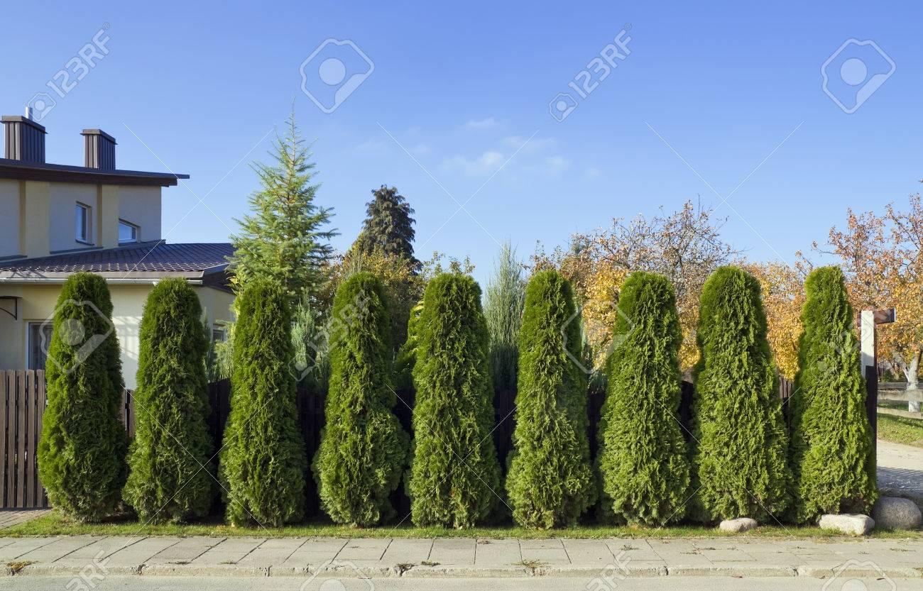 Die Massenproduktion Villa Hinter Dem Grunen Zaun Von Grunen Baumen