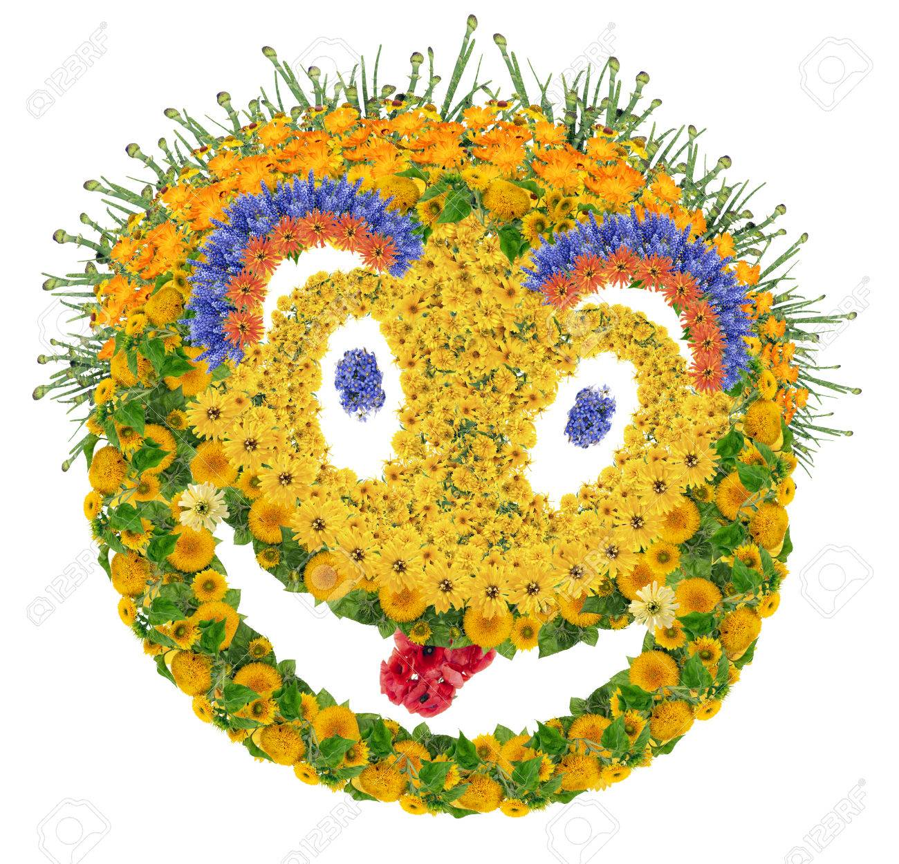 cool cheesy psychodelic smile sign made from fresh summer flowers isolated collage stock photo buy fresh cool summer