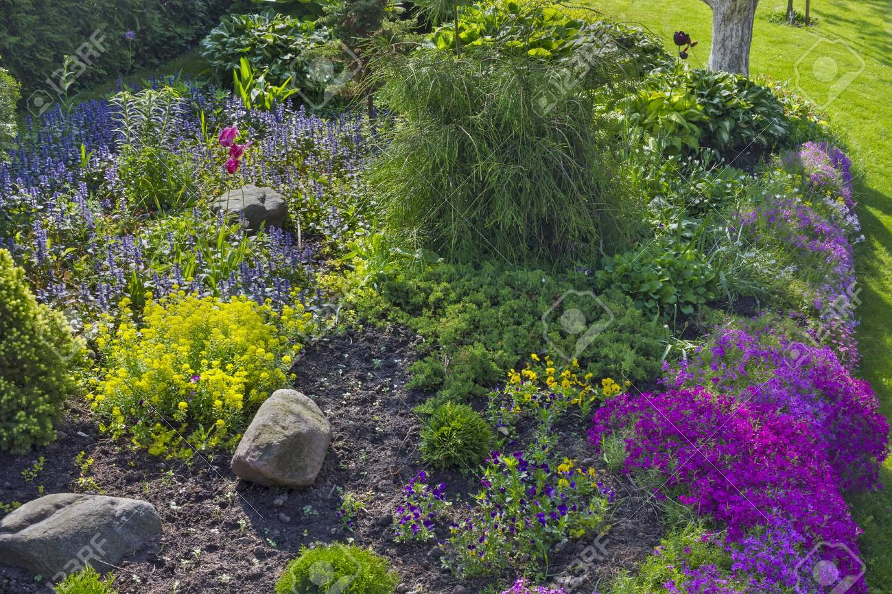 Part Of A Fine European Garden Landscape. Decorative Bushes.. Stock ...