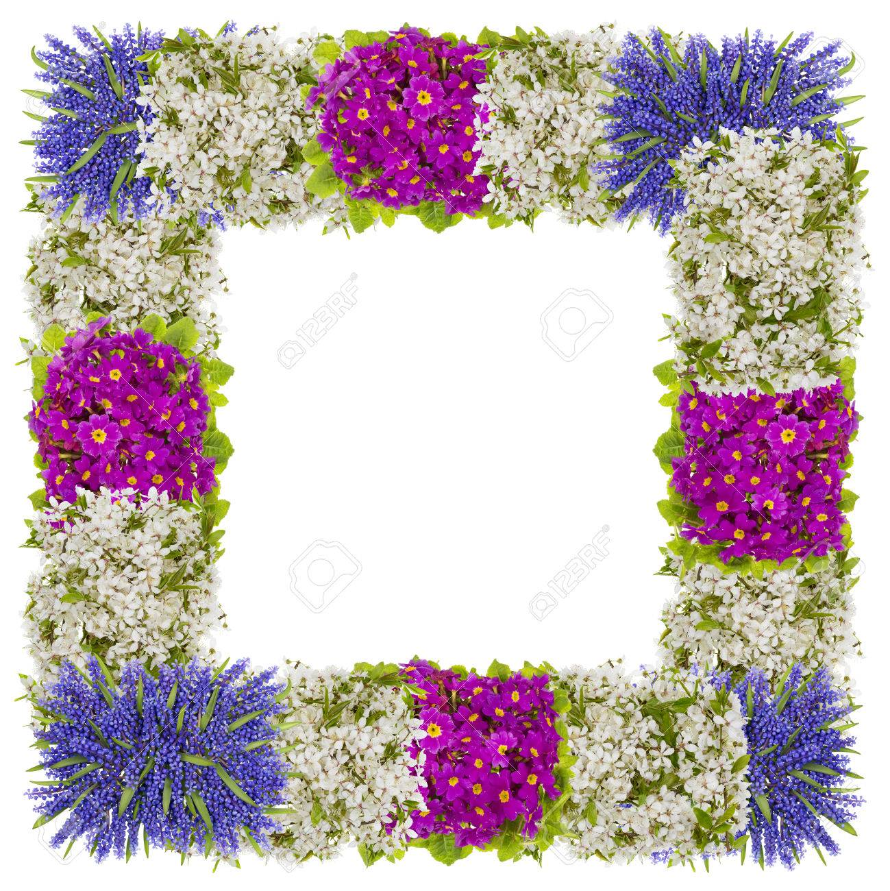 Easter photo frame made from first springs flowers isolated stock easter photo frame made from first springs flowers isolated abstract collage stock photo 57115594 mightylinksfo