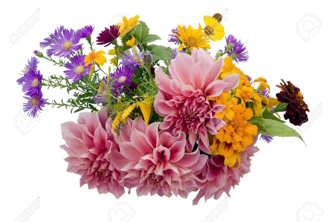 Bouquet From Simple Garden September European Flowers Isolate