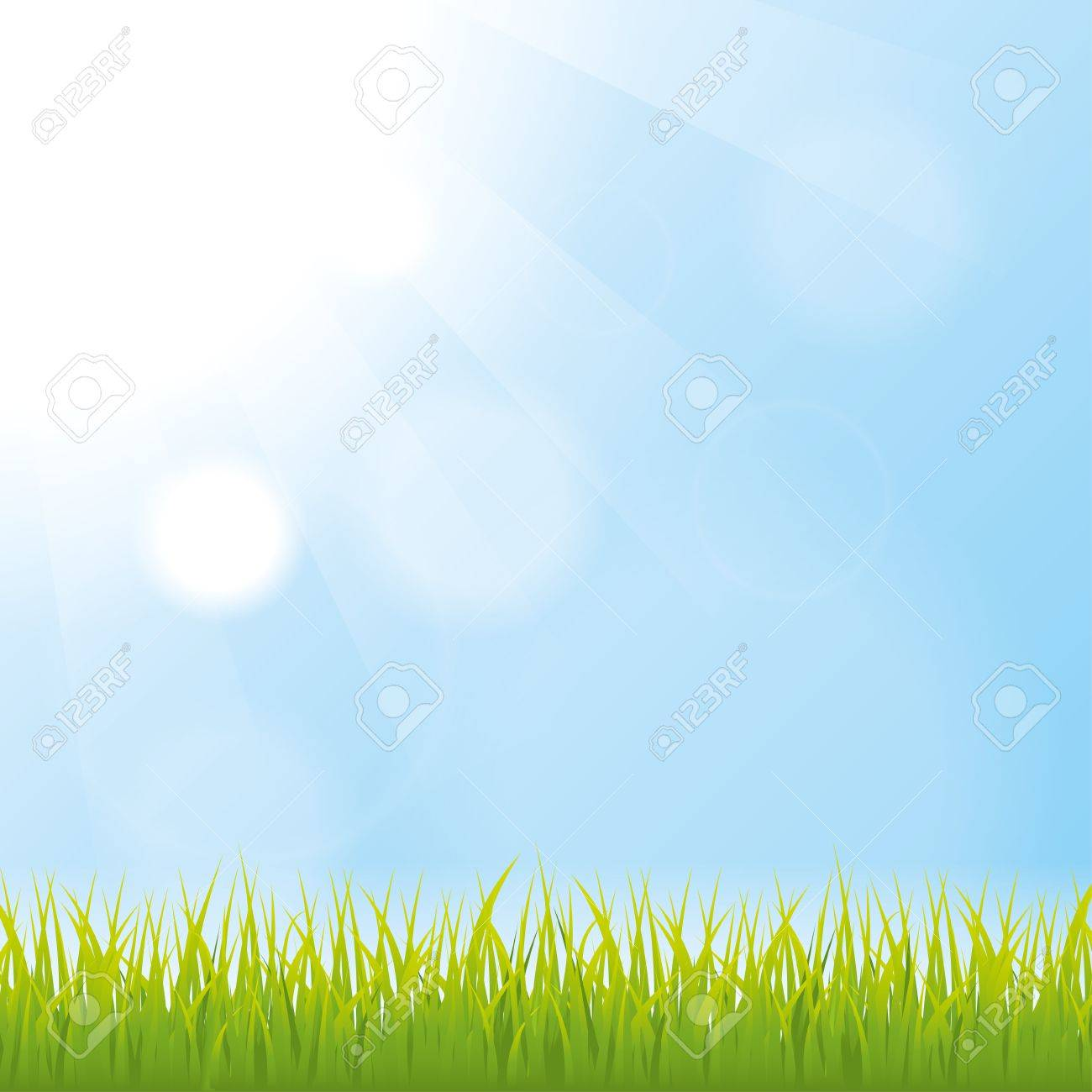 grass. nature background. vector. eps10 Stock Vector - 24901455