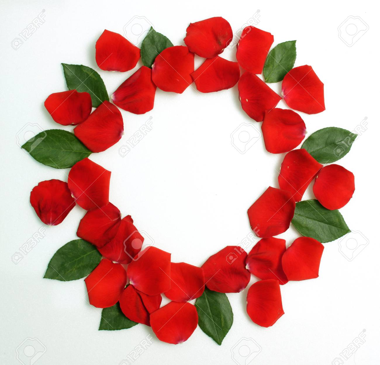 Marco Floral Redondo De Pétalos De Rosas Rojas Con Hojas Verdes ...