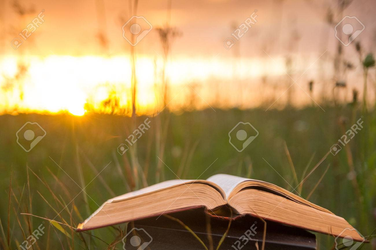 Opened hardback book diary, fanned pages on blurred nature landscape backdrop, lying in summer field on green grass against sunset sky with back light. Copy space, back to school education background. - 51869994