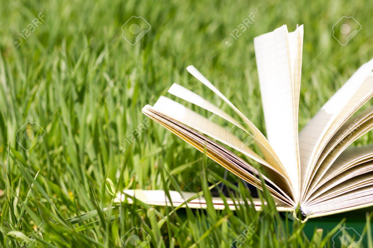 Summer spring backgound with stack of books and open book and bokeh. Back to school. Open book fanned pages. Copy Space - 54218770
