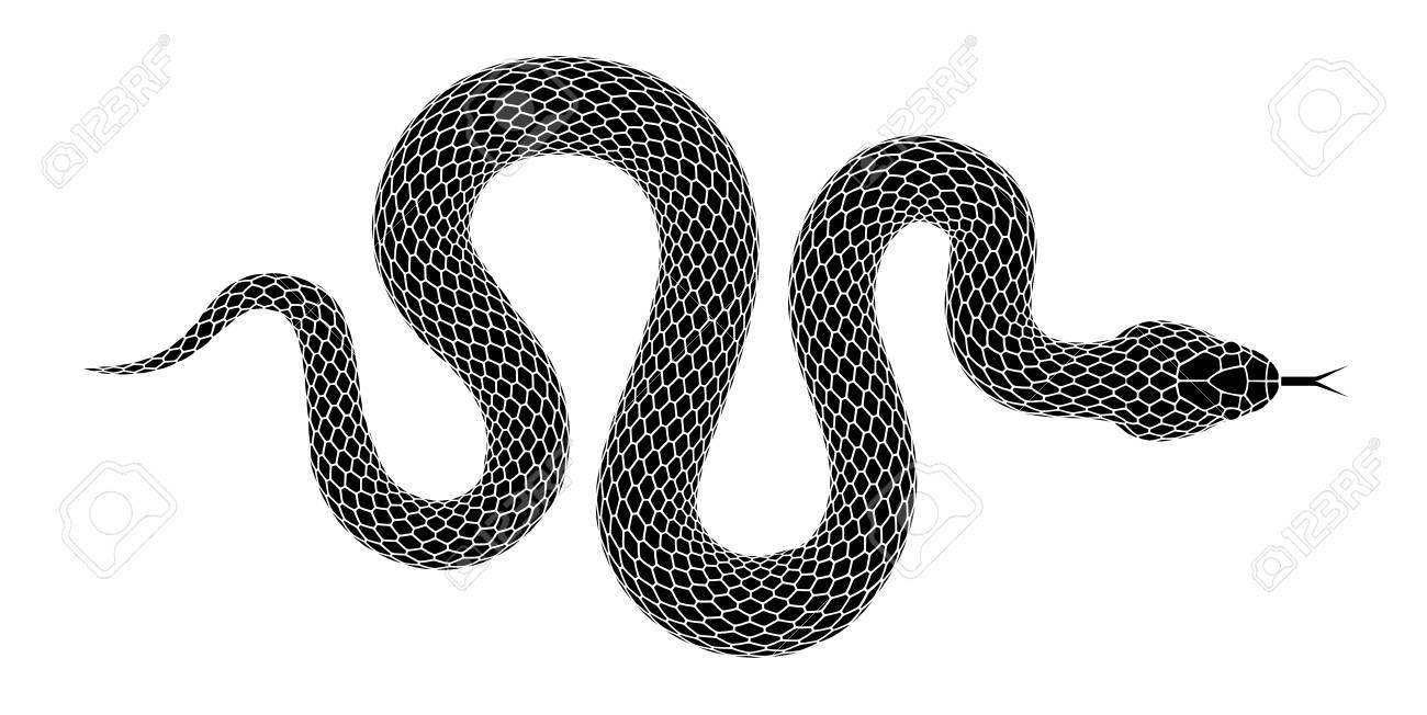 65e71e5f88312 Snake silhouette illustration. Black serpent isolated on a white  background. Vector tattoo design.
