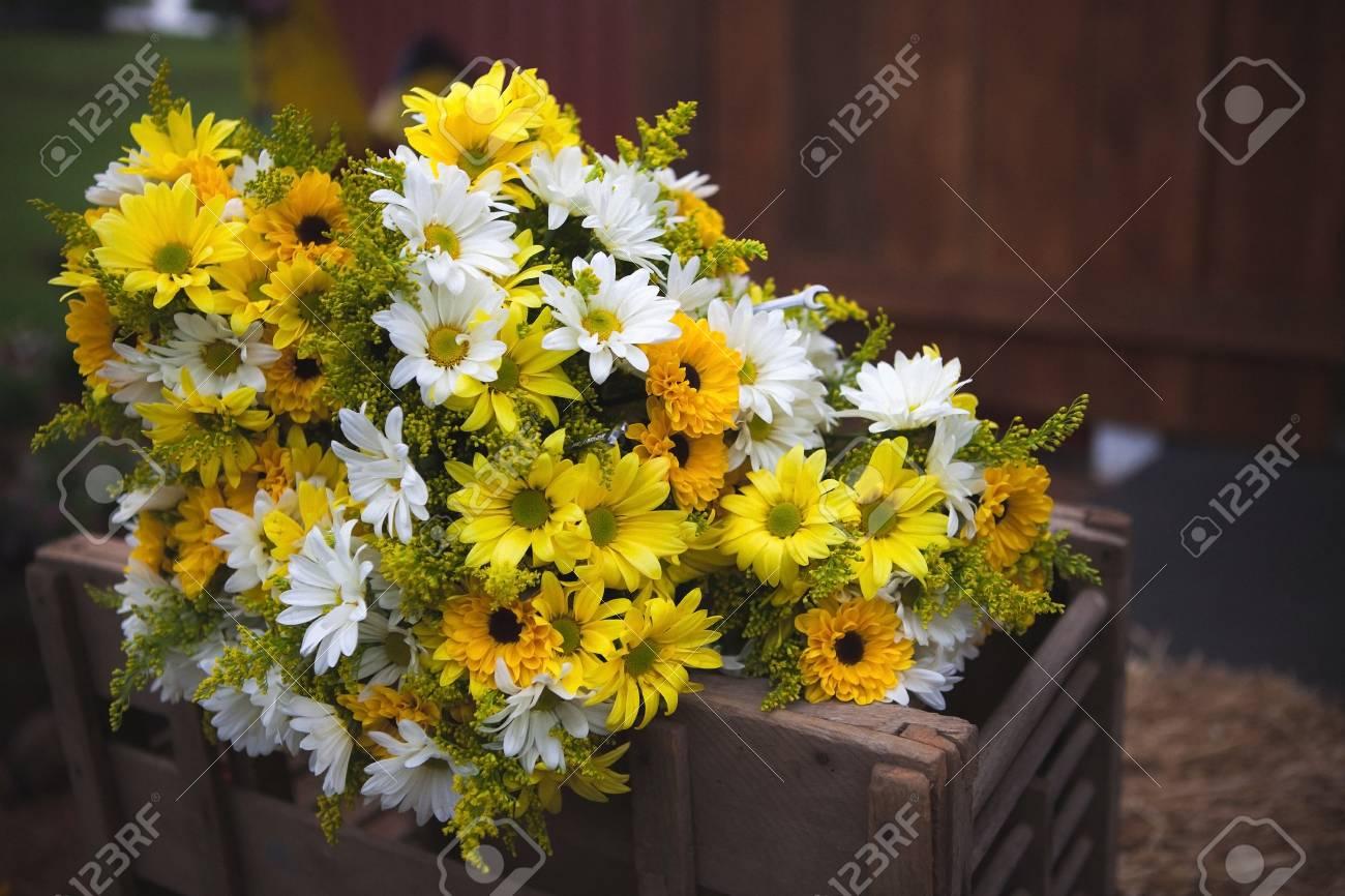 Hochzeitsstrauss Blumen Gelb Und Weiss Bluten 2 Lizenzfreie Fotos
