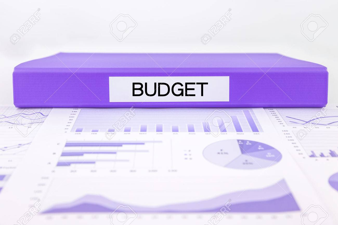 purple document binder with budget word place on graphs and charts