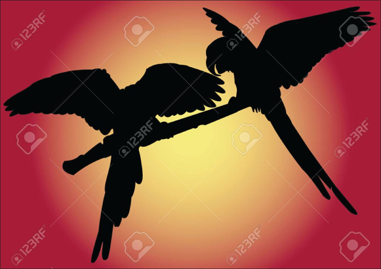 parrot with background - vector Stock Vector - 5120438