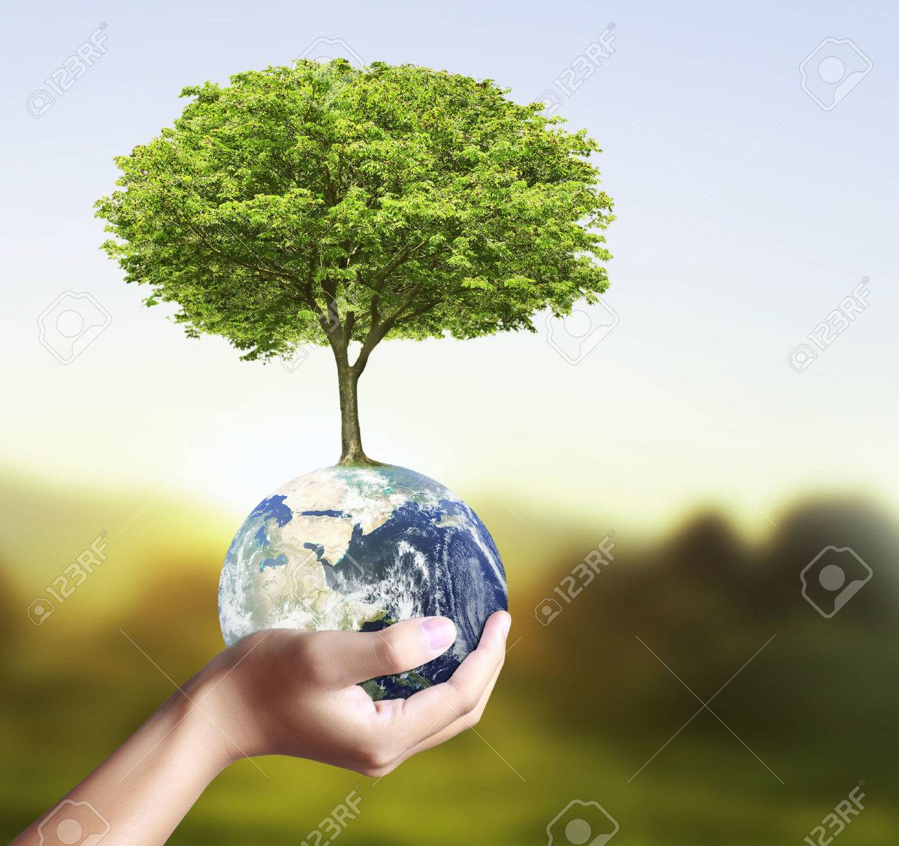 holding a glowing earth globe and tree in his hand - 23478457