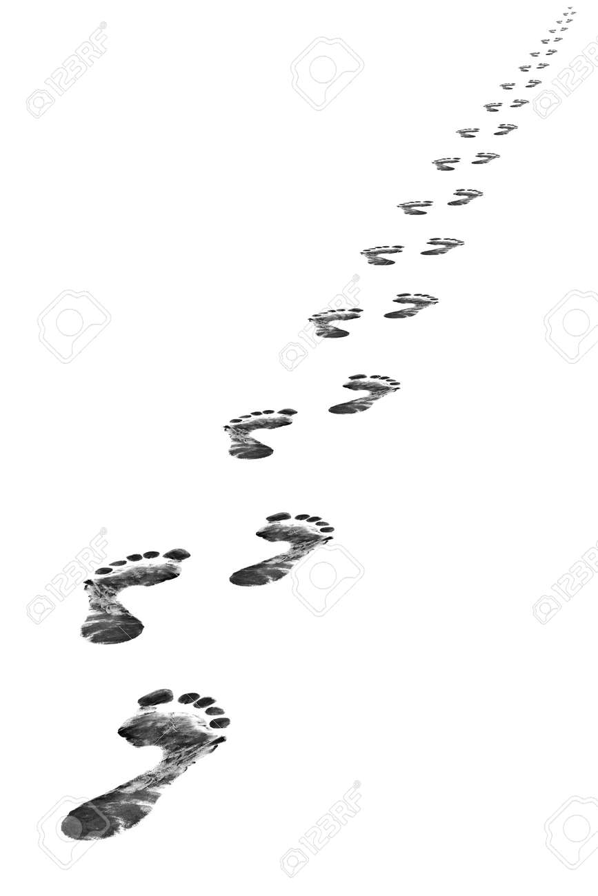 Foot steps, isolated on whine background Stock Photo - 2416044