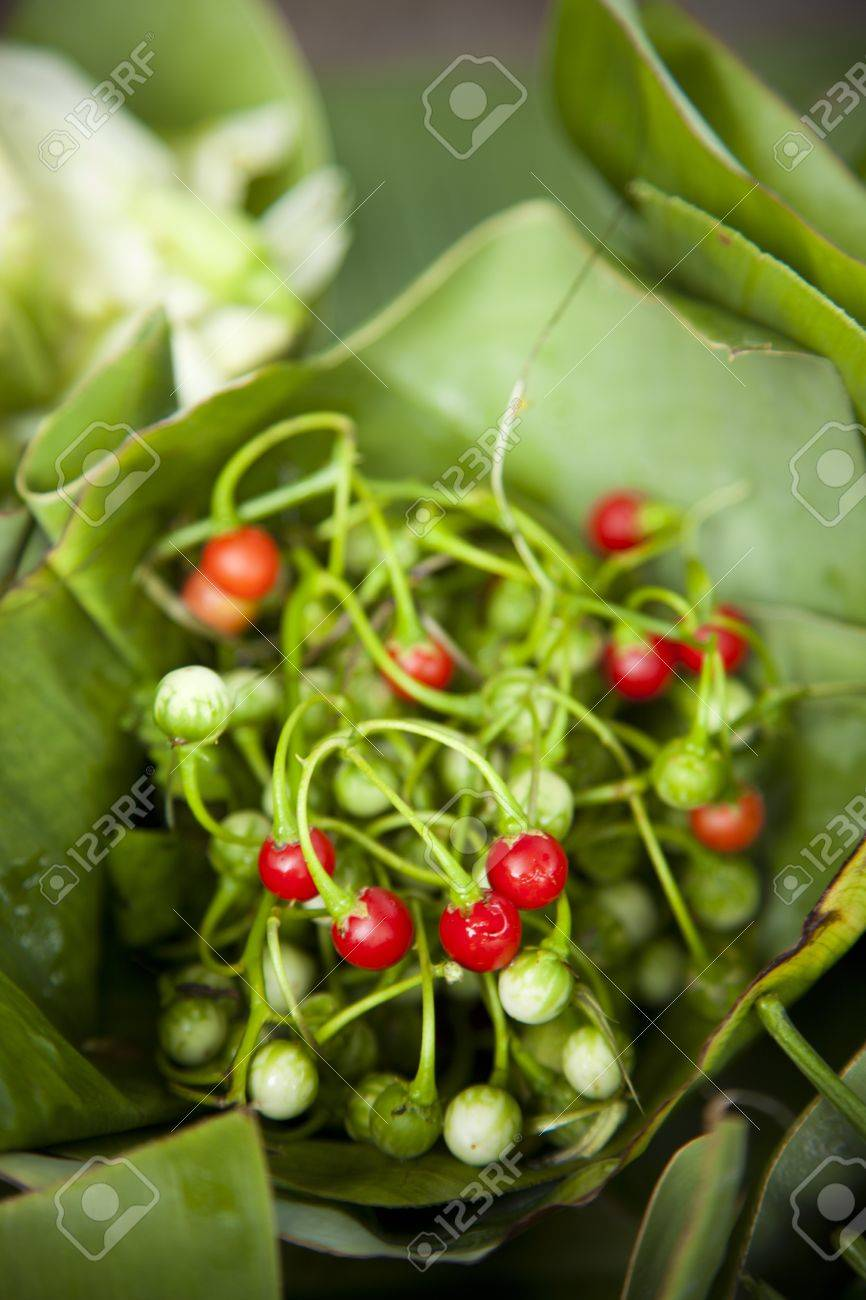 Cockroach Berry in banana leaf Stock Photo - 13683334