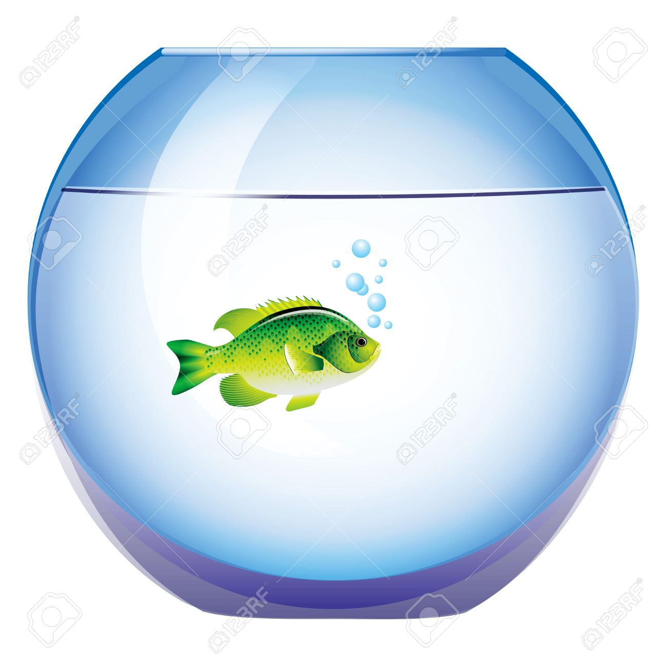 Round Aquarium With A Fish Vector Illustration Royalty Free