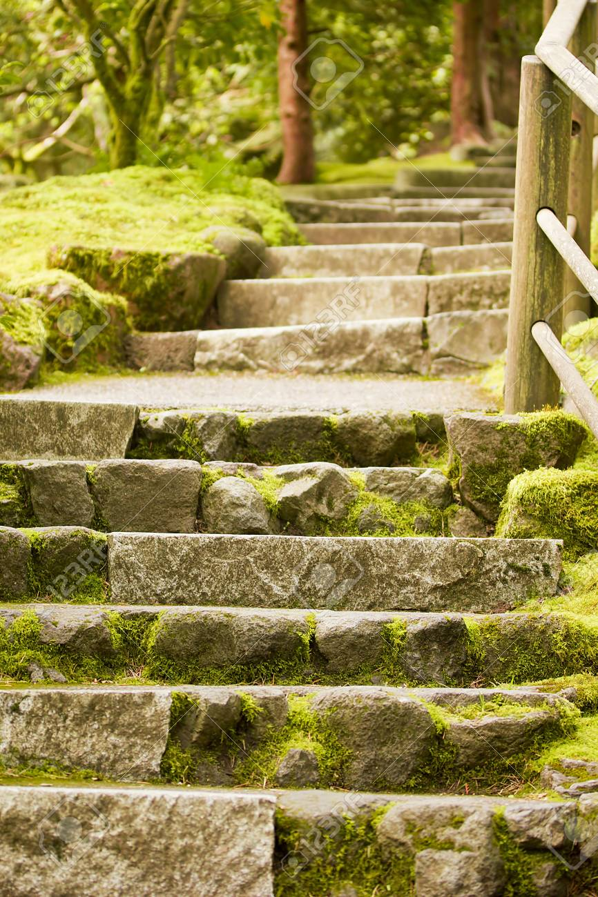 Landscaping.Decorative Stone Steps Down The Hill. Stock Photo ...