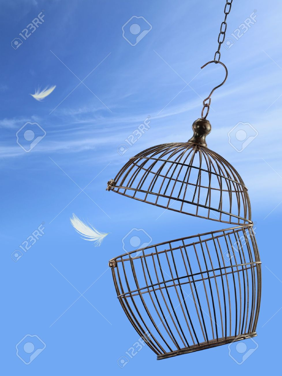 Freedom concept. Escaping from the cage Stock Photo - 13733515