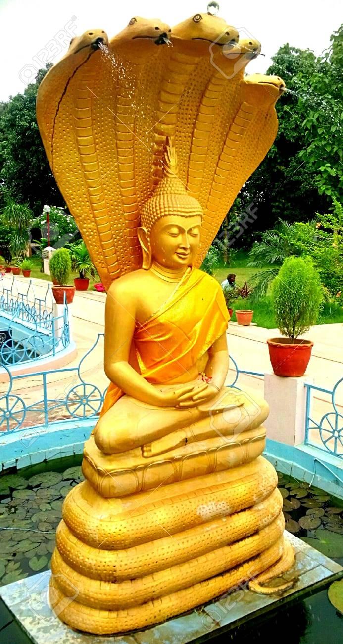 statue of lord buddha at sarnath in varanasi stock photo picture