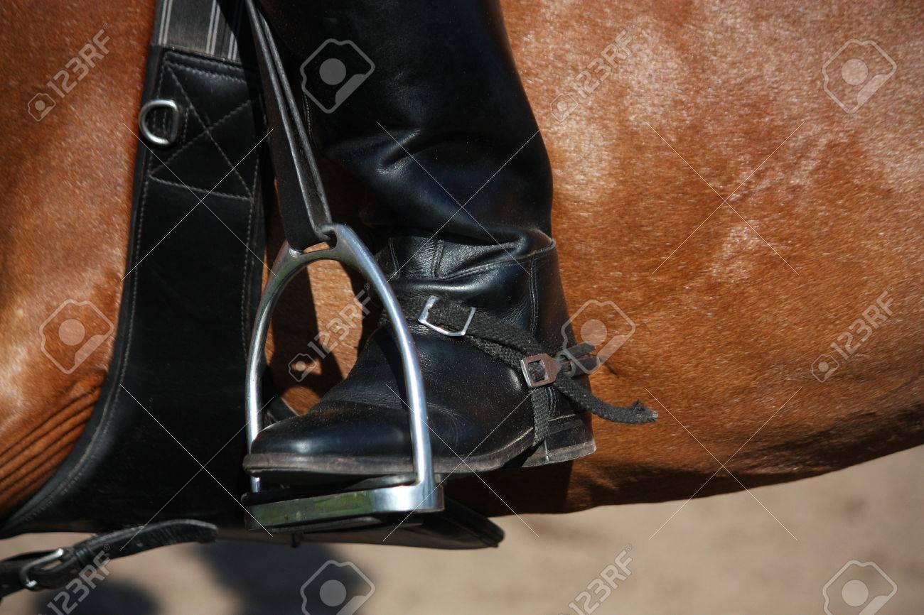 Nahaufnahme Von Fahrer Mit Stirnbein In Steigbügel Auf Braunem Pferd ...