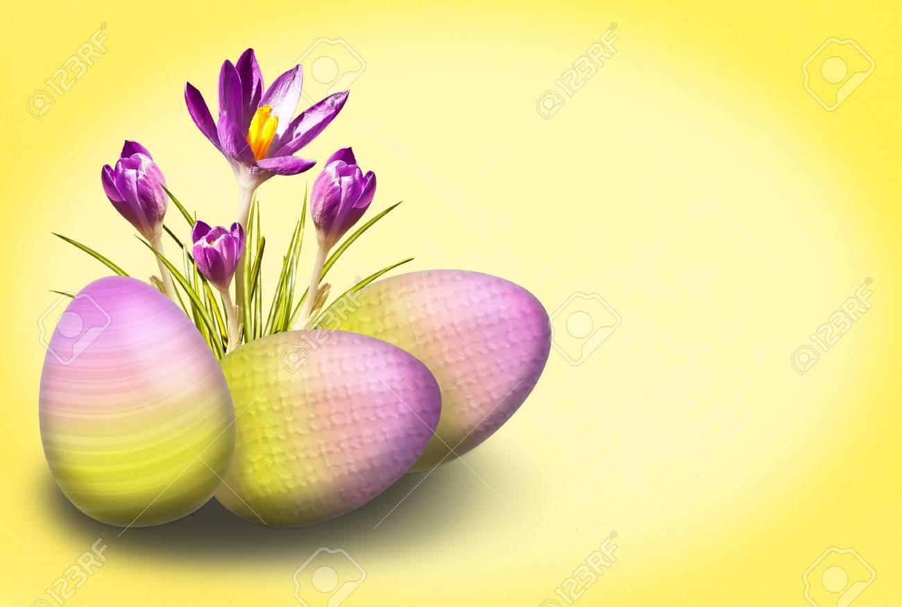 Easter background with crocus and egg in yellow and purple Stock Photo - 12602836