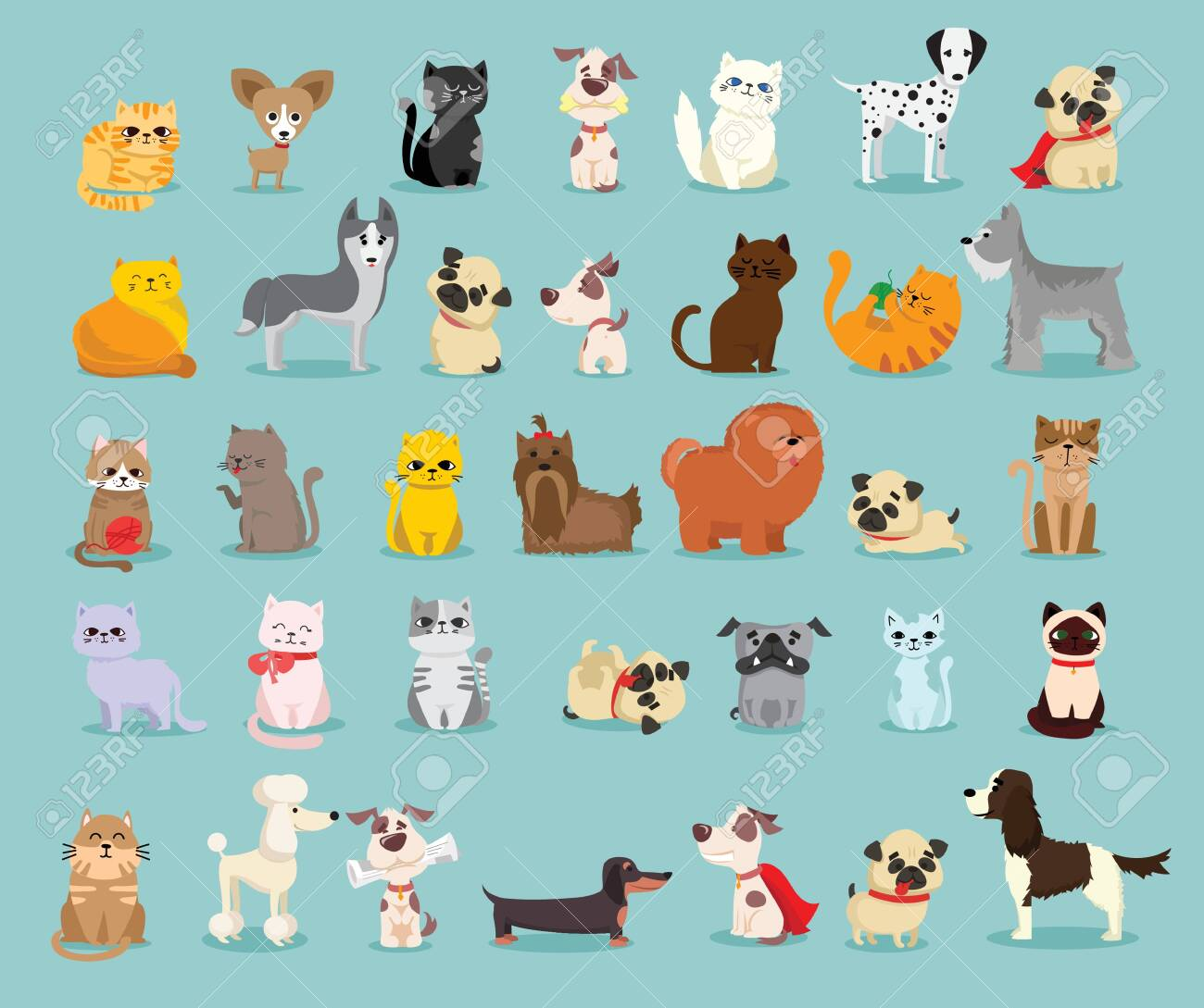 Different breed of dogs and cats. - 133335243