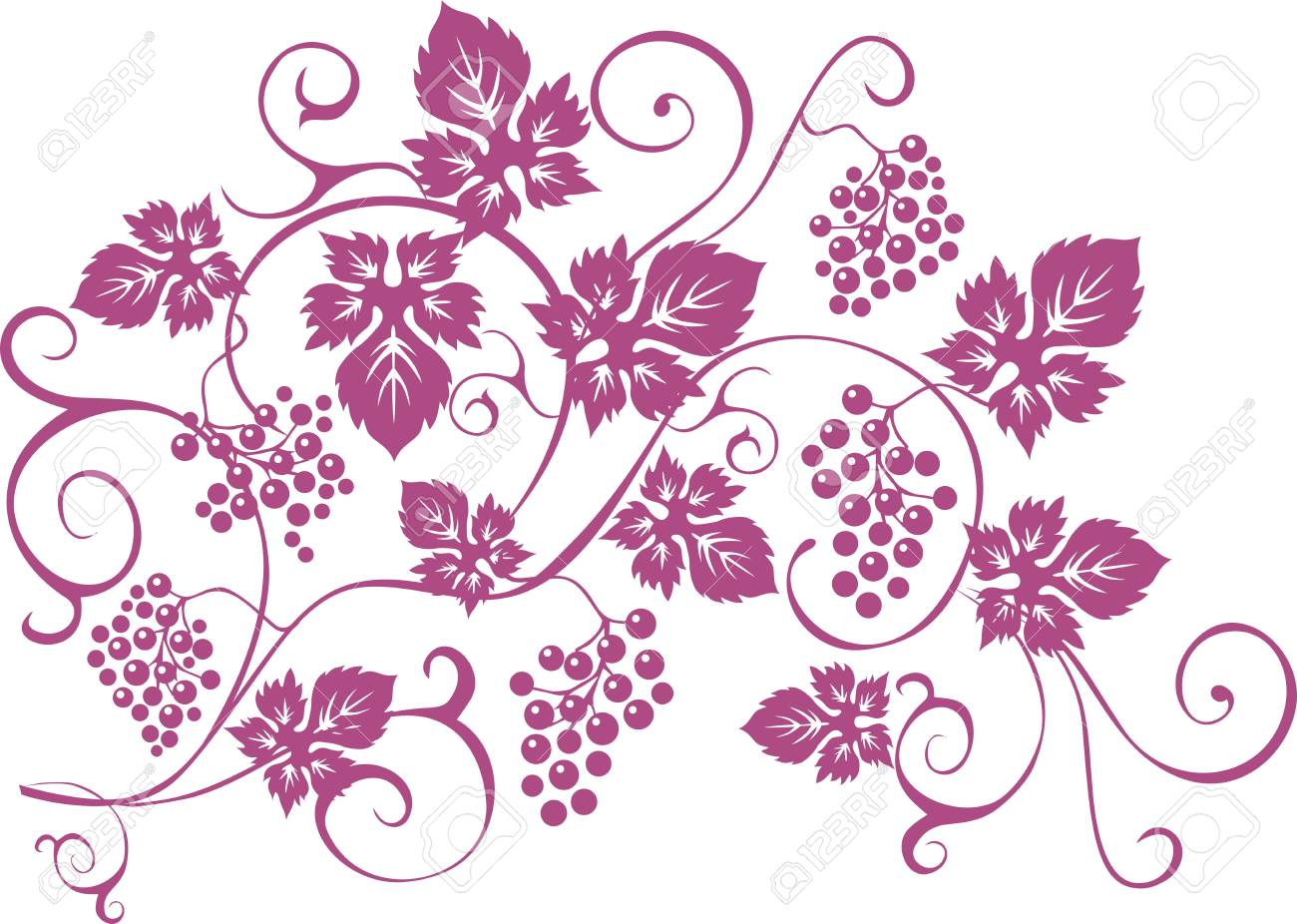 T Shirt Design Elements With Bunches Of Grapes And Vines In
