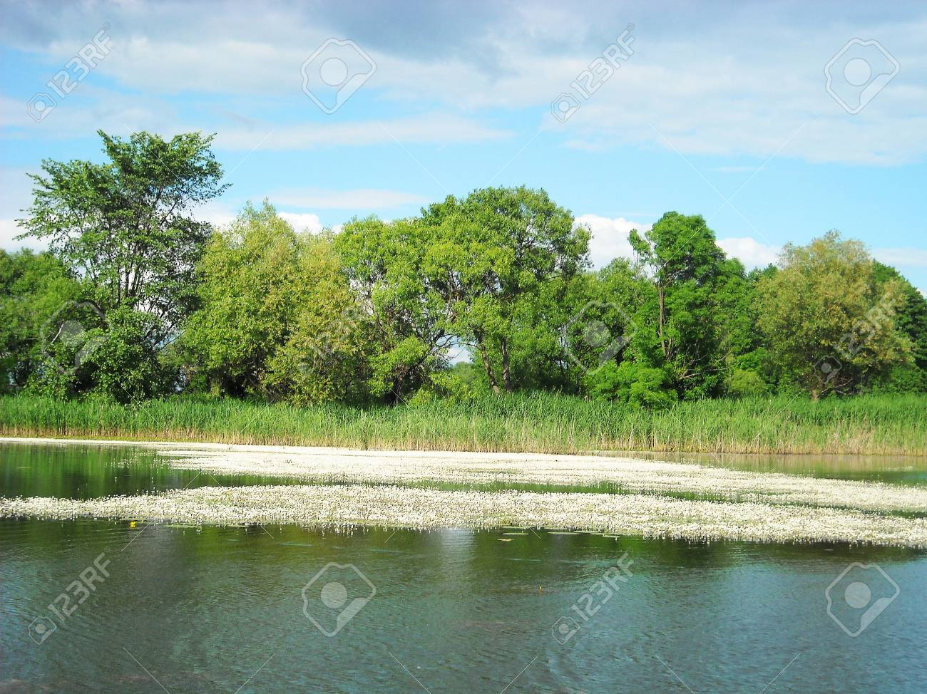 Lake with cloudy in Summer Stock Photo - 15734646