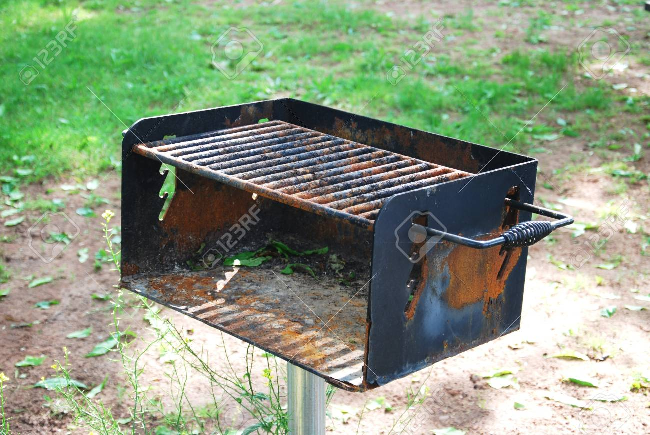 barbeque grill in park with green grass background