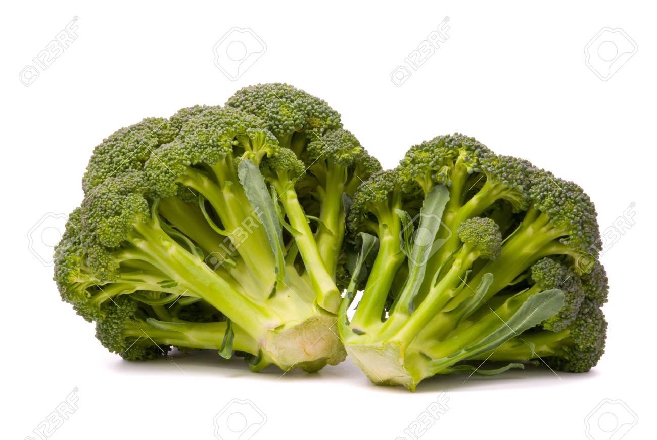 Fresh broccoli isolated over the white background Stock Photo - 7289553