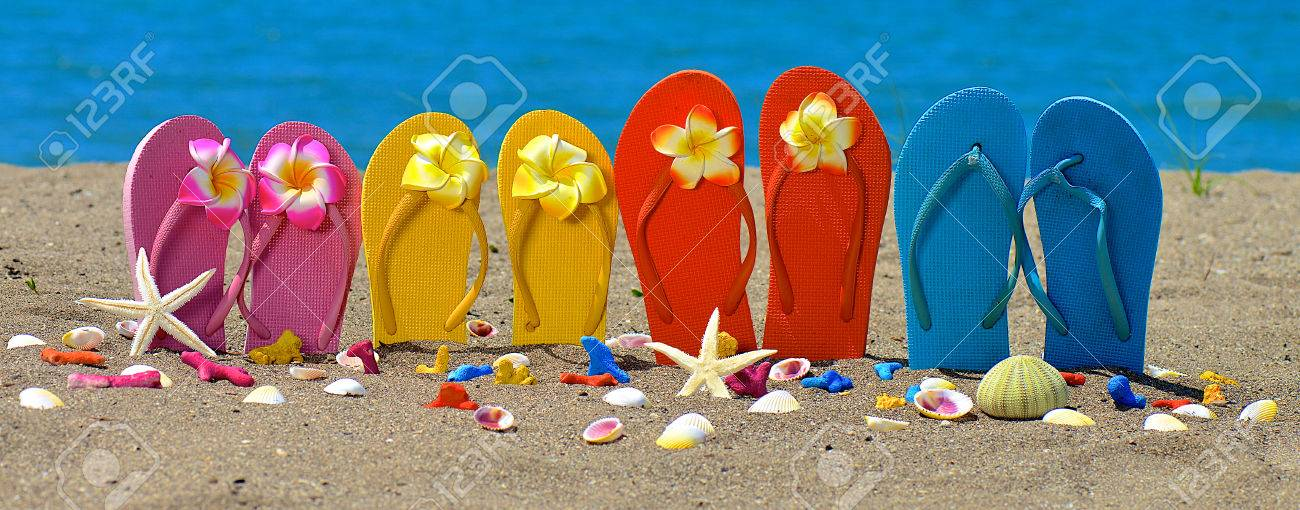 Flip flops, seashell and starfish with tropical flowers on sandy beach - 50816117