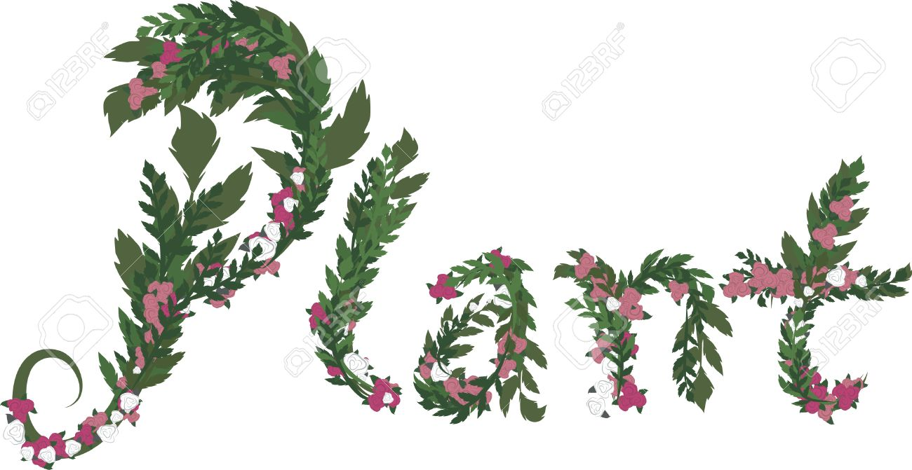 Illustration of Plant text, with no gradients. Stock Vector - 2441677