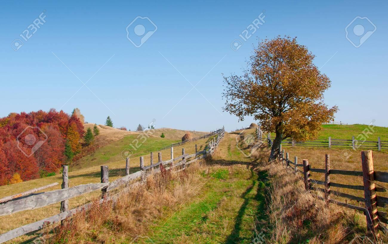 Beautiful autumn landscape in the mountains, Carpathian, Ukraine - 121851385