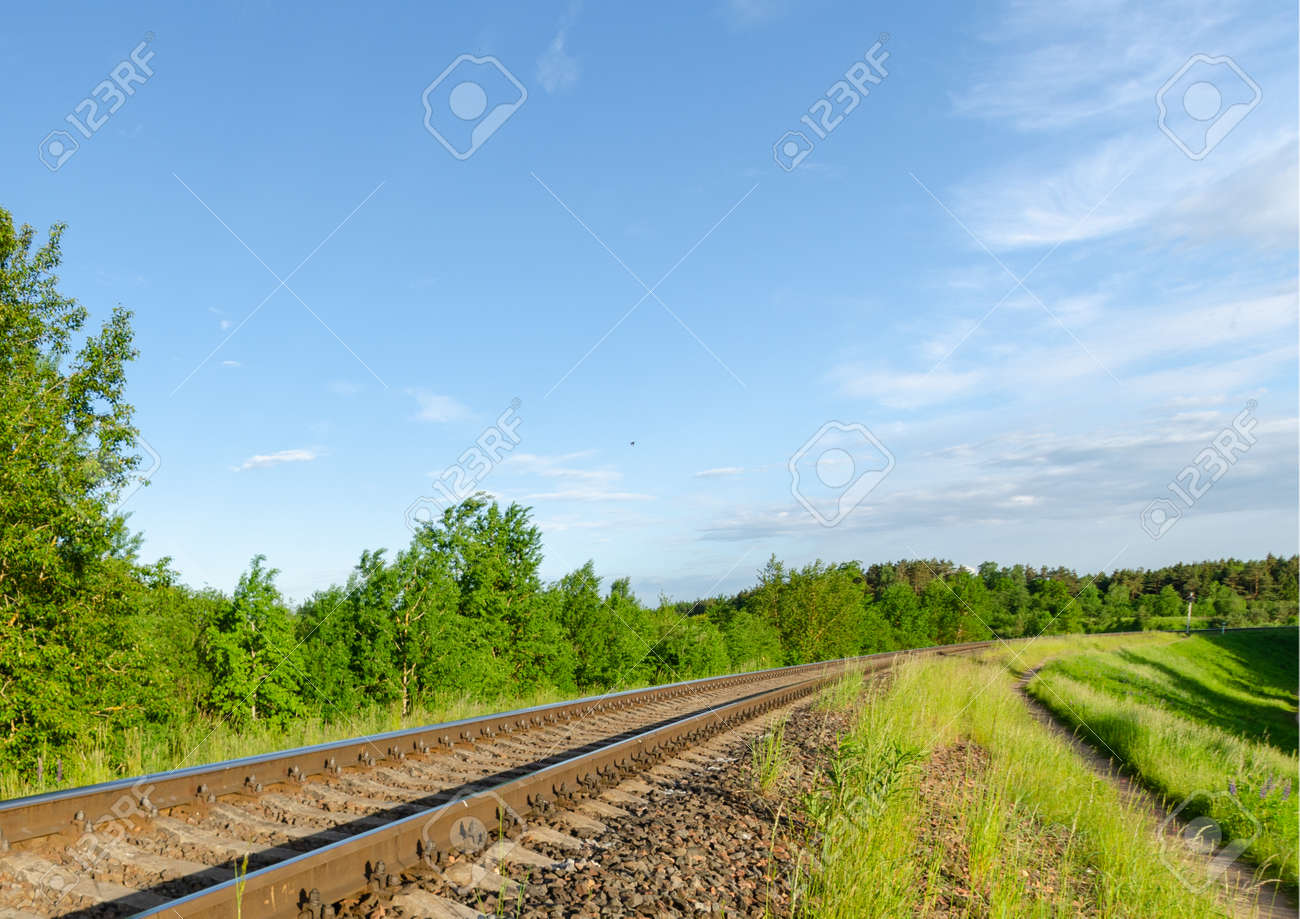 Railway in the summer evening forest. summer evening - 172140020