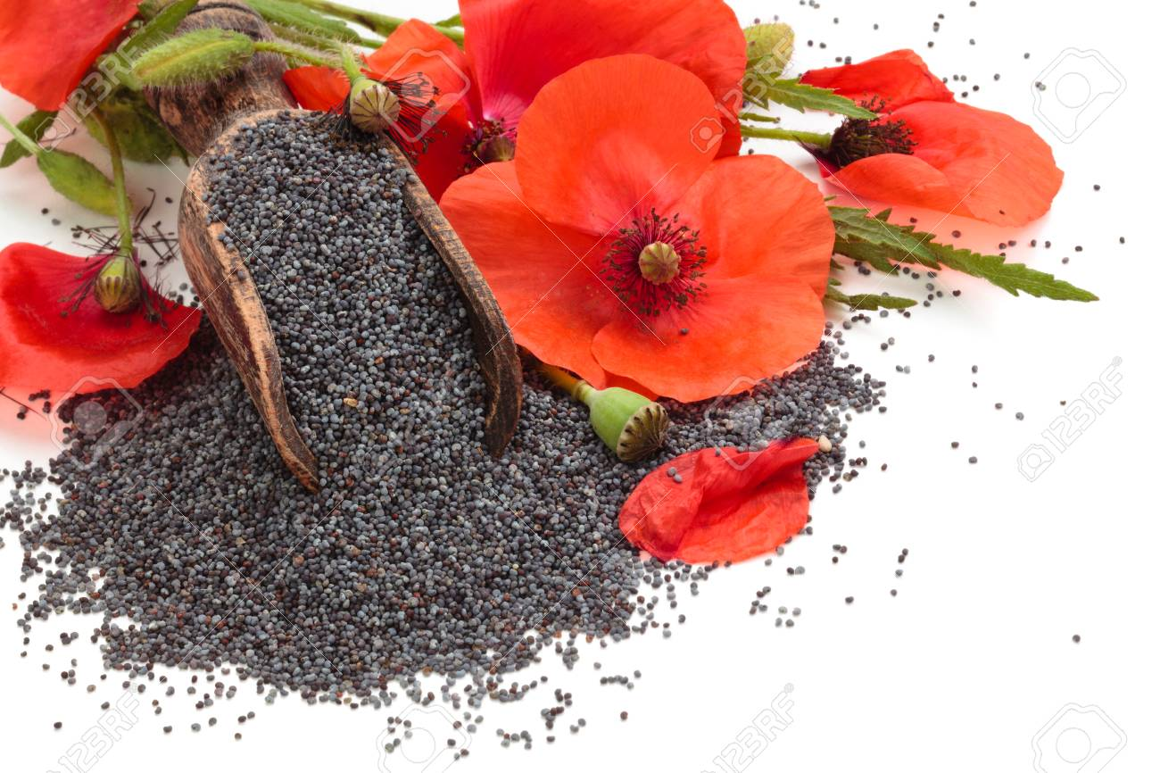 Poppy Flowers And Poppy Seeds In Wooden Scoop Isolated On White