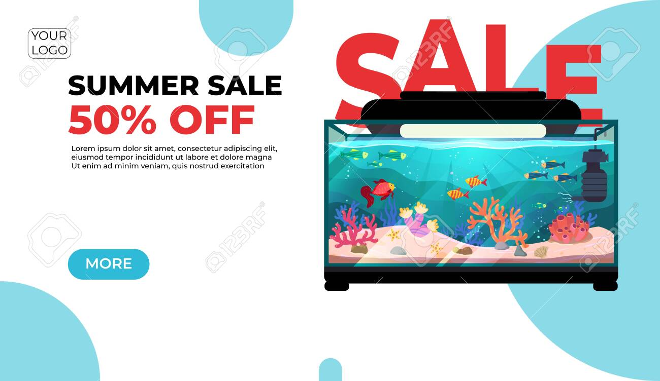 Summer sale, modern web banner in paper cut style for your website with round aquarium with fish - 135537775