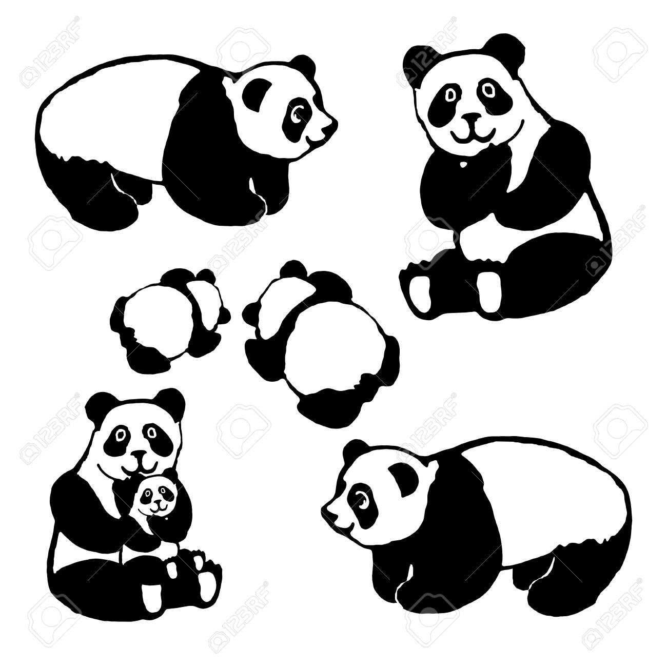 Vector De La Imagen De Un Oso Panda Conjunto Para El Diseño De Postales Libros Para Colorear Imprimir En La Ropa