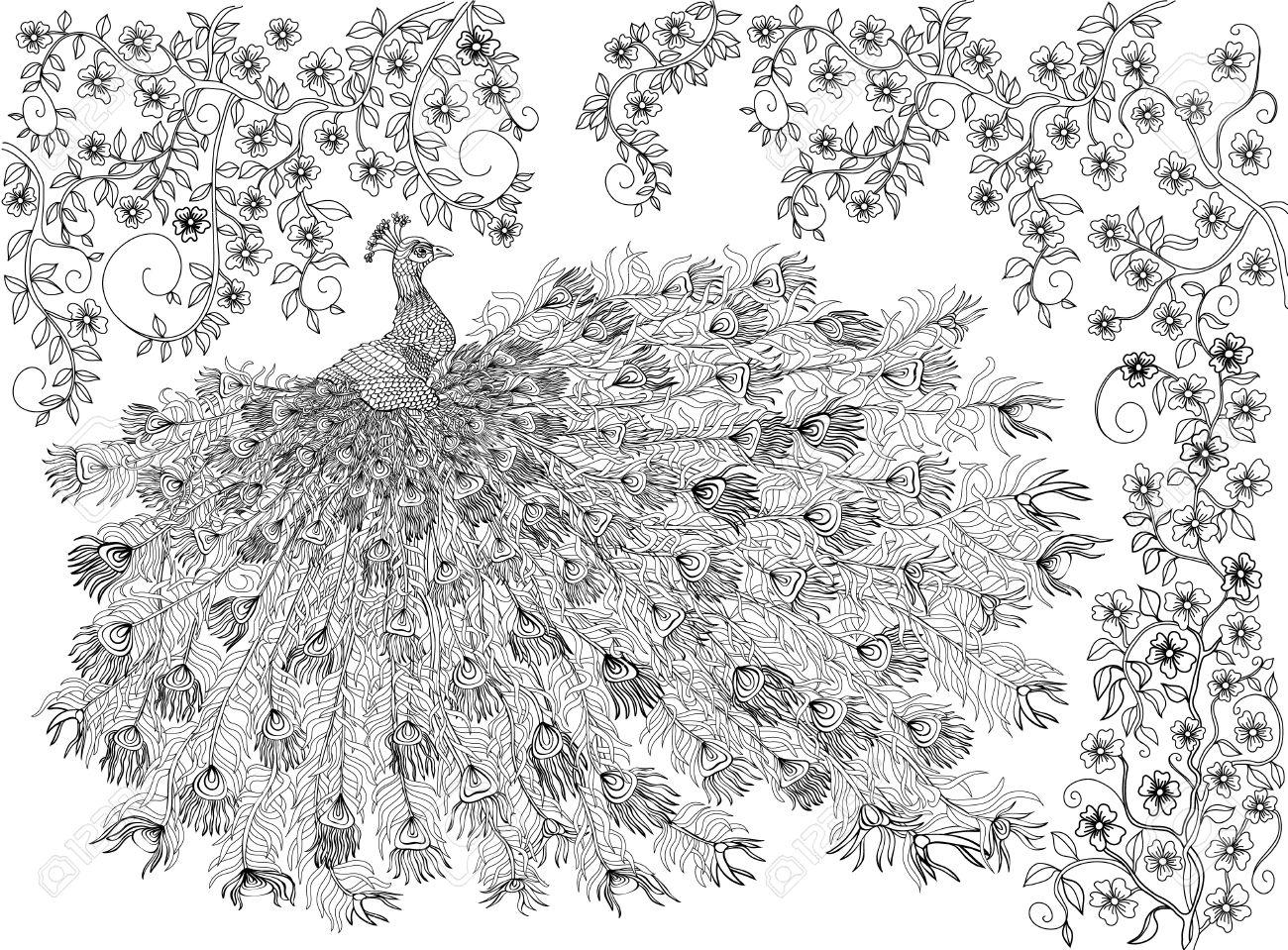 Coloriage Oiseau Sur Arbre.Main Oiseau Dessine Couronne Paon Sur Une Branche D Un Arbre De La
