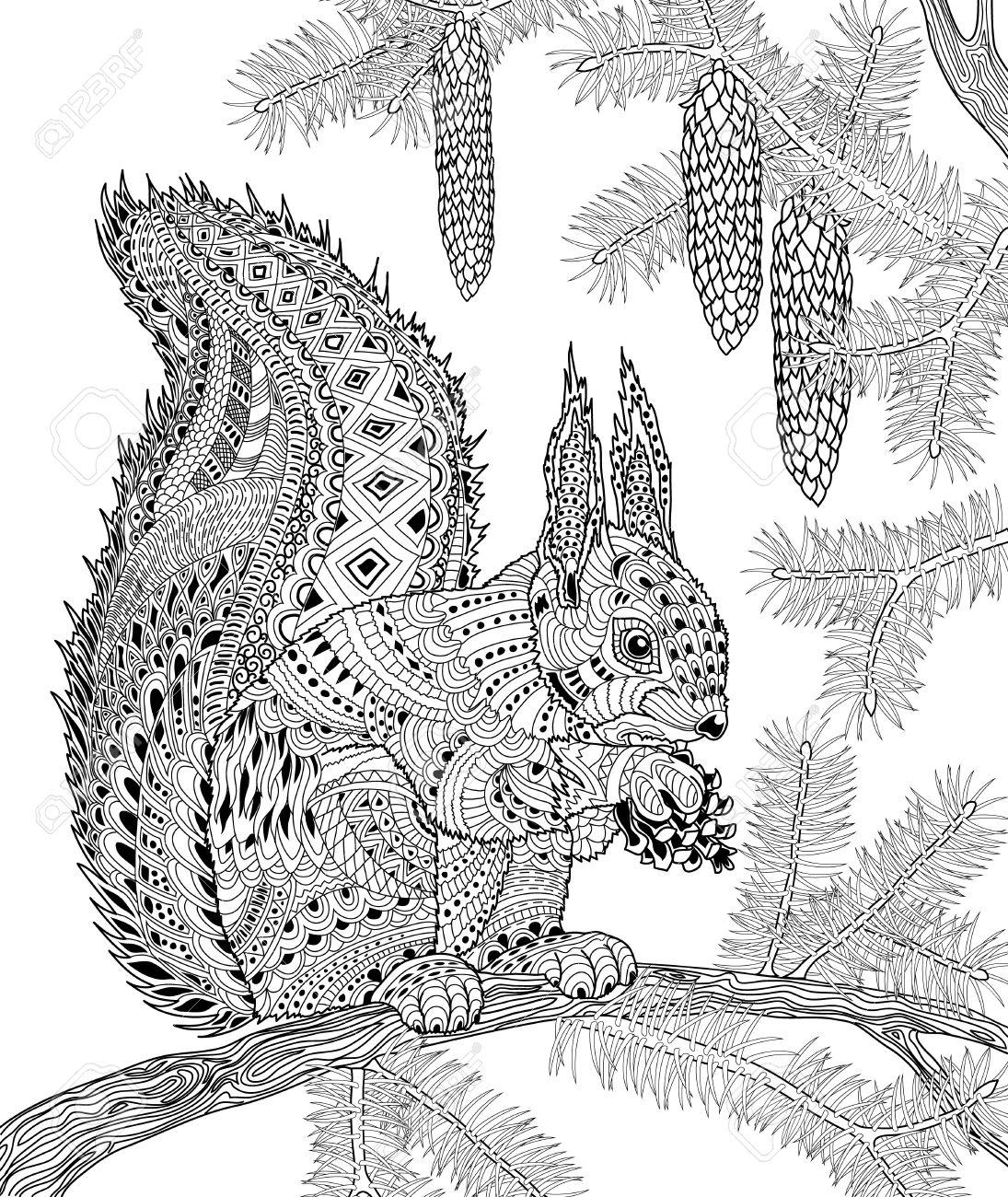 L écureuil pour anti stress adulte coloriage pour l art thérapie