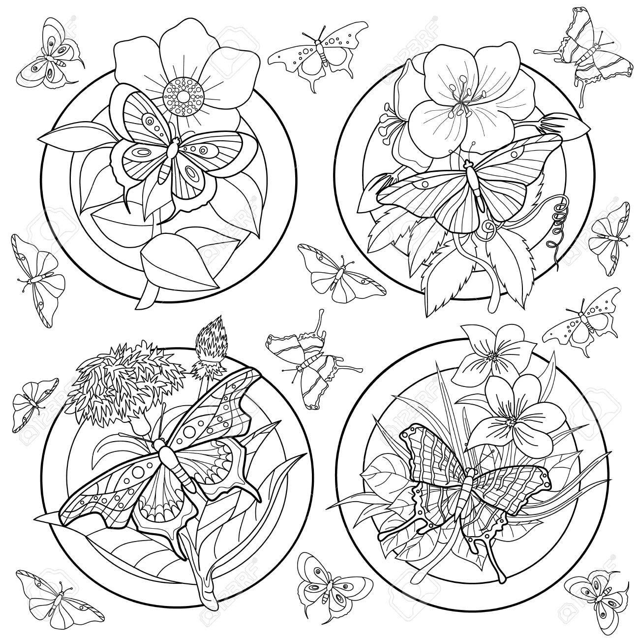 Malvorlage Für Erwachsene Mit Schmetterlingen Und Blumen