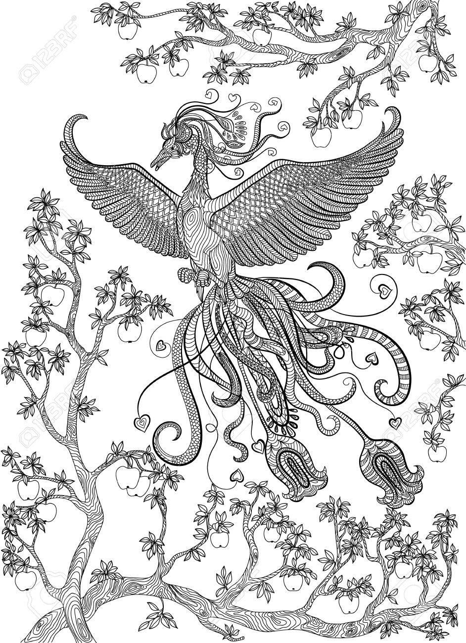 Dibujado A Mano Pájaro - Pájaro De Fuego En Una Rama De árbol De ...