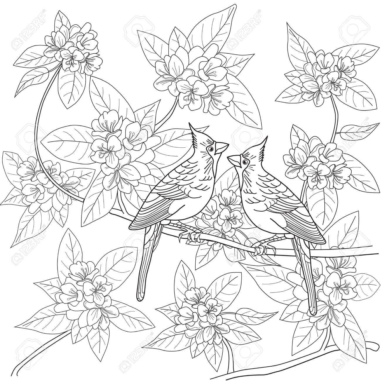 Dibujo Para Colorear Para Los Adultos Con Pájaros Y Flores