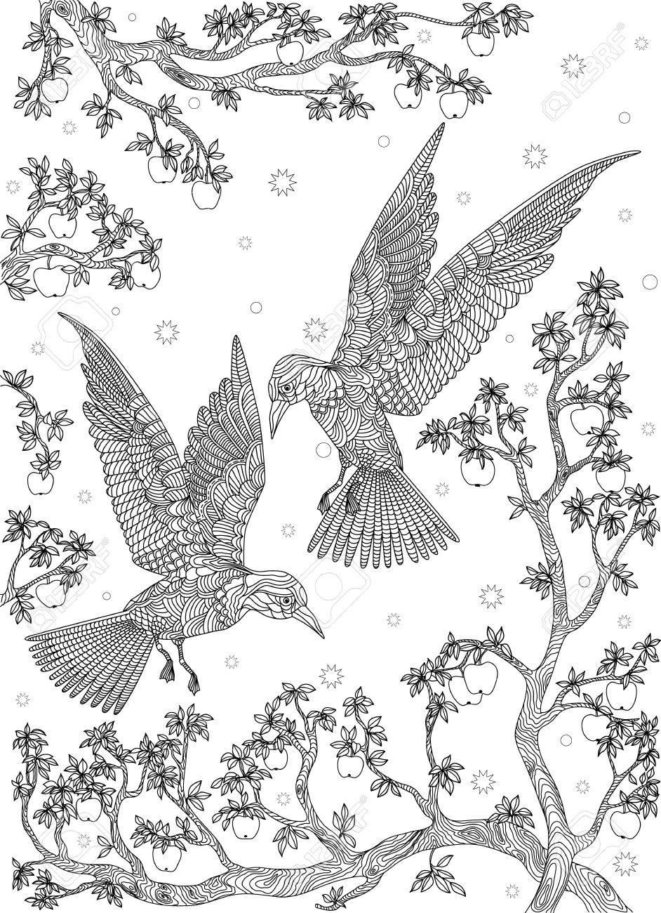Dibujado A Mano Pájaro - Pájaros En Una Rama De árbol De Manzana ...