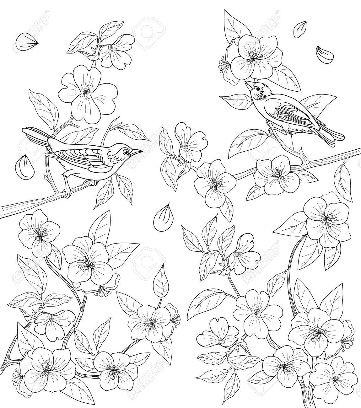 Dibujo Para Colorear Para Los Adultos Con Pájaros Y Flores ...