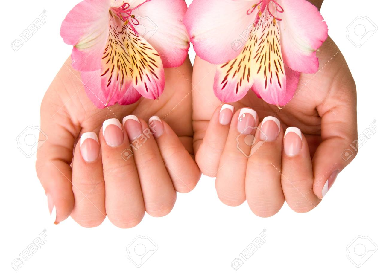 nail care for women's hands, isolated on white background Stock Photo - 17784661