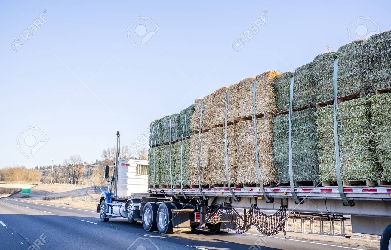 Blue Big Rig Day Cab Classic American Bonnet Semi Truck Tractor Stock Photo Picture And Royalty Free Image Image 113941739