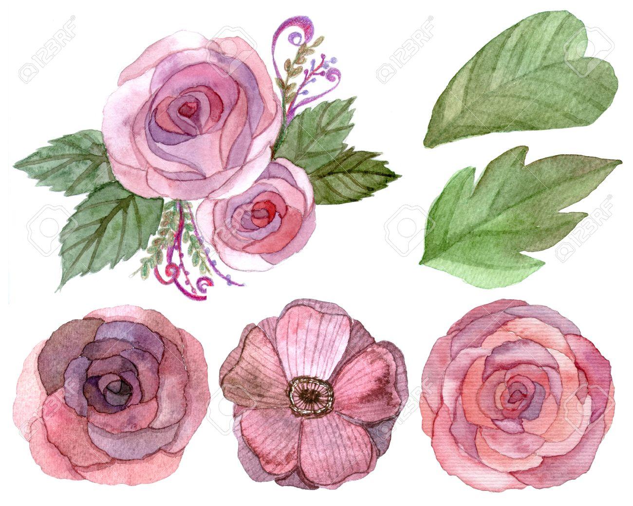 Set De Fleurs Et Des Feuilles Dessin Traditionnel Et La Peinture à Leau Couleur Sur Fond Blanc
