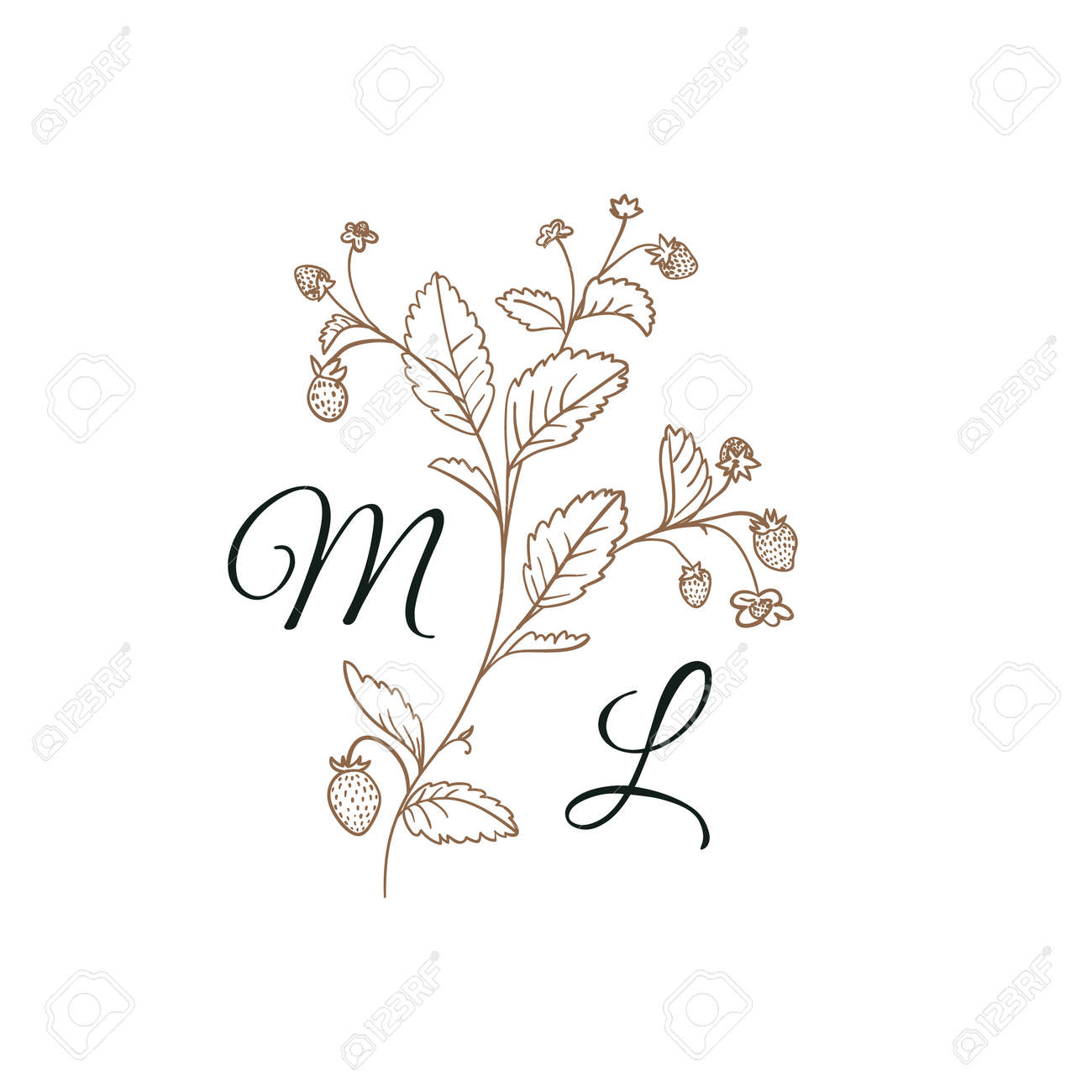 Nature Initials M and L isolated design, uppercase letters with strawberry branch. - 170175988