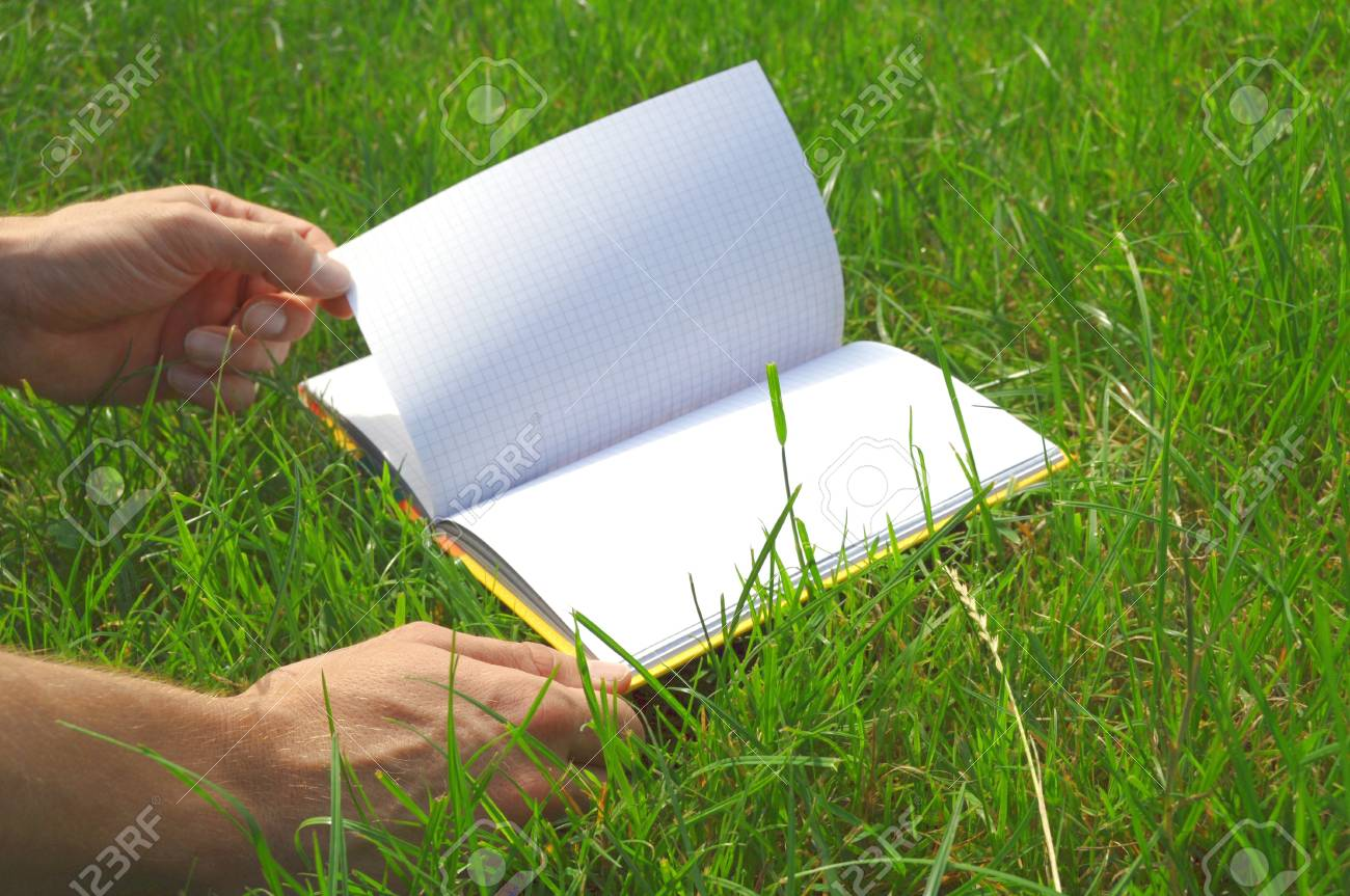 A blank opened book outdoors lying on the green grass. Stock Photo - 7911582